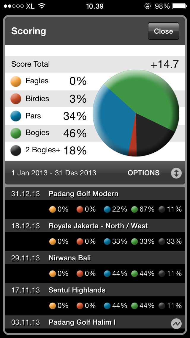 2013 Golf Scores Breakdown